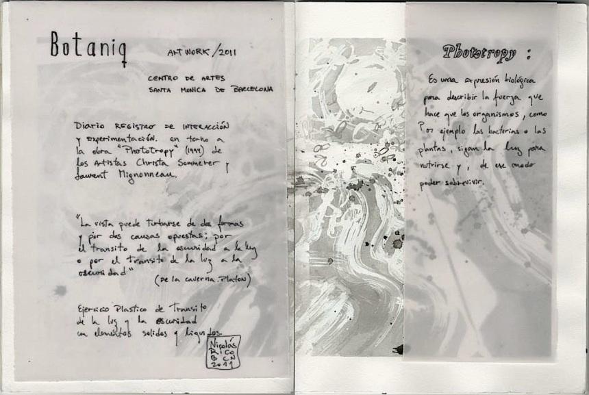0020 Phototropy A(diario BOTANIC)