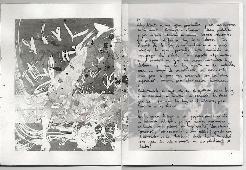 0022 Phototropy B (diario BOTANIC)